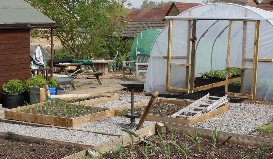 Caswell Clinic Allotment